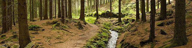 Eindrücke aus der Welterberegion Erzgebirge.
